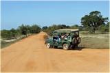 Yala National Park Vehicles