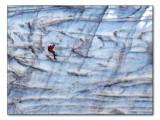 Gletscherklettern / ice-climbing (2115)