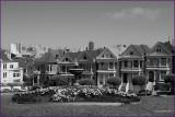 San Fransico Painted Ladies Victorian  Homes