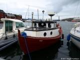 Royndin Fríða TN 654