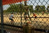 cleveland softball finals trophys