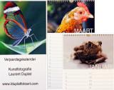 Contact / opdrachten - reportage photo sur mesure