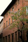 Street colour, Siena