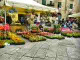 Flower Festival, Lucca