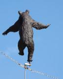 The amazing dancing bear