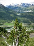 Camino de Muottas Muragl a Alp Languard