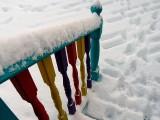 Fiesta Snow ~ January 22nd