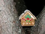 Tree House ~ January 28th