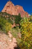 Zion - Kolob Canyon
