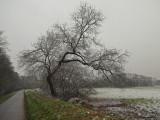 le canal en hiver