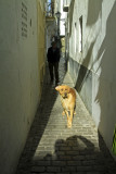 the streets of Tarifa