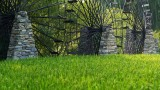 .Ethnic Cultural Park.The Water Wheels and the paddy Field