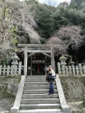 011 kyoto shrines and temples.JPG