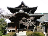 024 kyoto shrines and temples.JPG