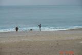 seaside_13.JPG