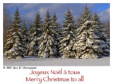 Joyeux Noël ///  Merry Christmas
