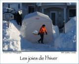Winter pleasures ...