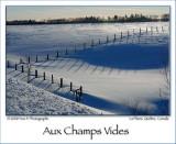 Empty fields ... (Jan 2008)