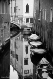 VENEZIA BLACK AND WHITE