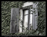 Windows vista 2010