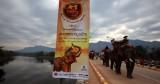 The Elephant Festival-Sayaboury. Laos