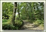 Bois de Fraimont Nessonvaux