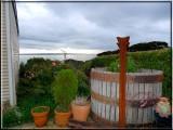 Pretty sheltered garden