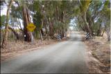 Sklee road
