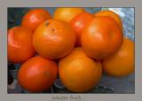 Popular winter fruit