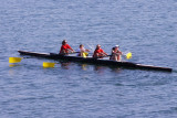 Rowers on the Collingwood Harbour