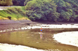 Exploring the Looe river bed.