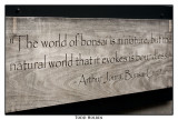 bonsai_world