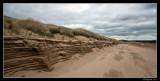 dune bank
