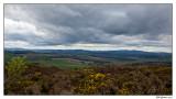 distant Bennachie