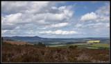 Hill of Fare