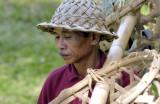 Rice worker II