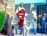 Morocco Royal Guard