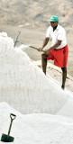 Salt Pans Worker