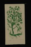 grrr (woodcut) 9.5 x 5