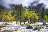 Yosemite light Snow