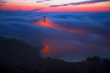 Above the Fog in Marin