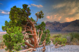 Red Rock Canyon Storm