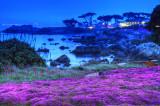 Pacific Grove Twilight