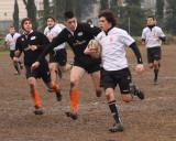 Lions vs. Bombo 2011