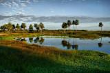 Esterales del Ñeembucú - Ñeembucú Wetlands (Paraguay)