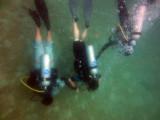 Divers below