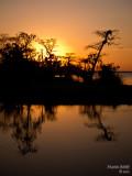Black Hammock Sunset