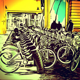 The city's bicycles
