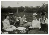 Kaffeselskab på plænen i Allinge ca. 1902