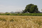 Fields and farm.